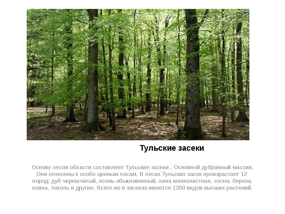 Тульские засеки Основу лесов области составляют Тульские засеки . Основной д...
