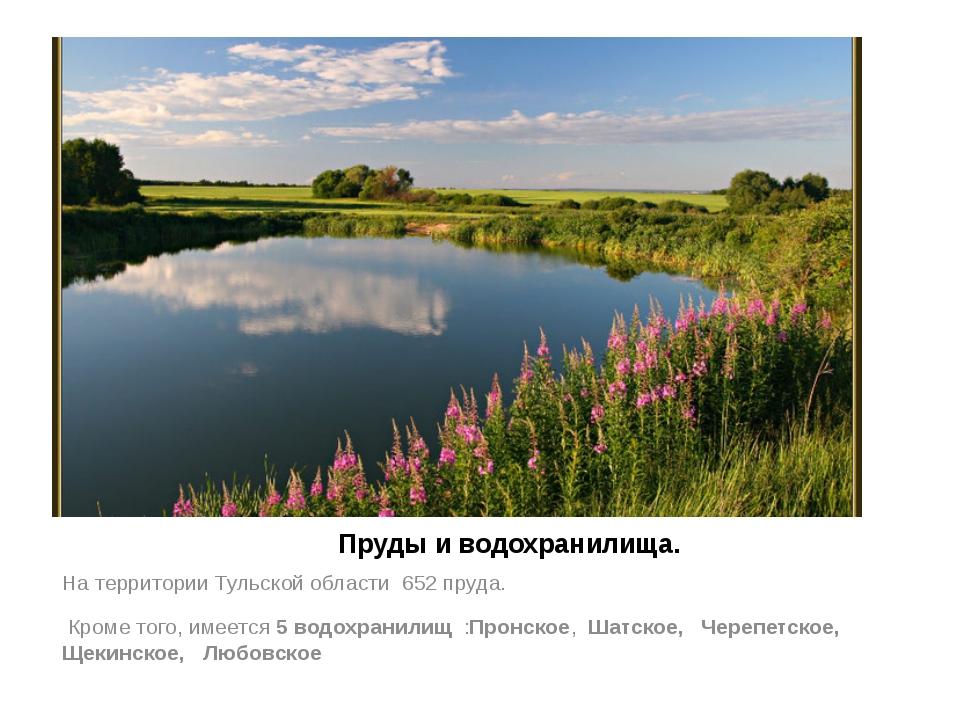 Пруды и водохранилища. На территории Тульской области 652 пруда. Кроме того,...