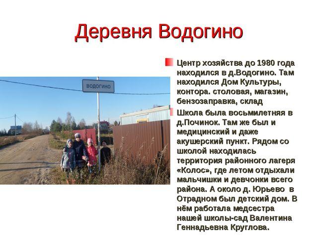 Деревня Водогино Центр хозяйства до 1980 года находился в д.Водогино. Там нах...