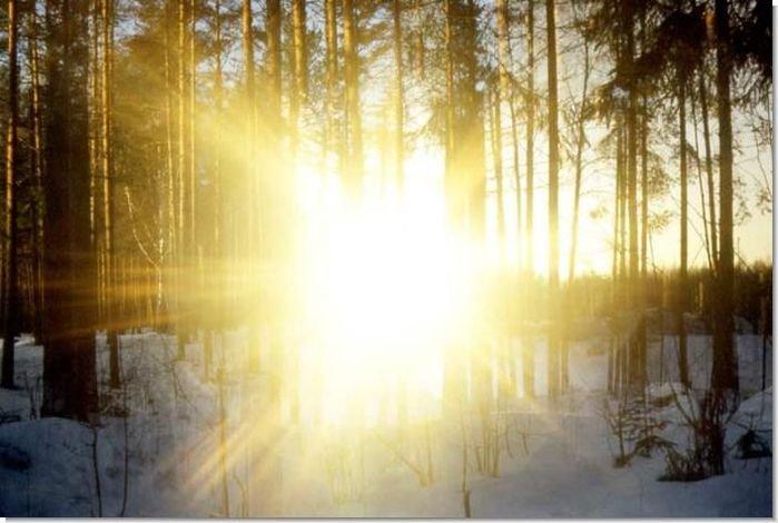 В глобальном потеплении солнце не виновато - AgroXXI