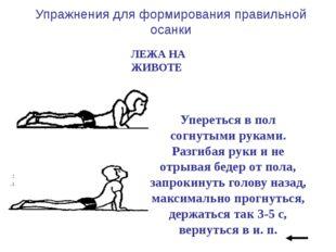 Кисти рук соединить за спиной. Поднять голову, плечи и ноги; прогнуться, вер
