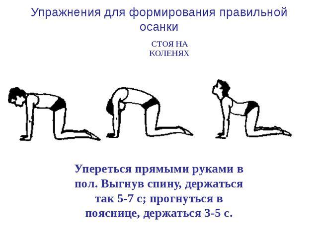 Упереться прямыми руками в пол, отводить назад прямые ноги (поочередно) и го...