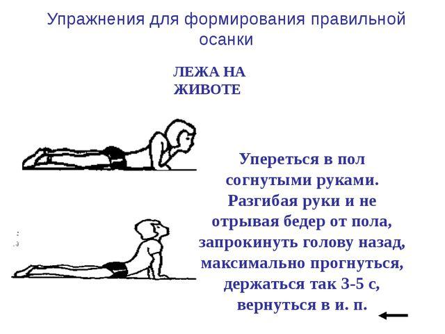 Кисти рук соединить за спиной. Поднять голову, плечи и ноги; прогнуться, вер...