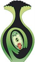C:\Program Files\Образовательные комплексы\Биология, 6 класс. Растения. Бактерии. Грибы. Лишайники\edu_r75_bio6\data\res\resFA971F70-9405-46B8-8A10-1E8E649F5851
