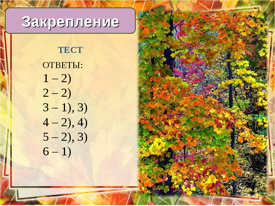 Закрепление ТЕСТ ОТВЕТЫ: 1 – 2) 2 – 2) 3 – 1), 3) 4 – 2), 4) 5 – 2), 3) 6 – 1)