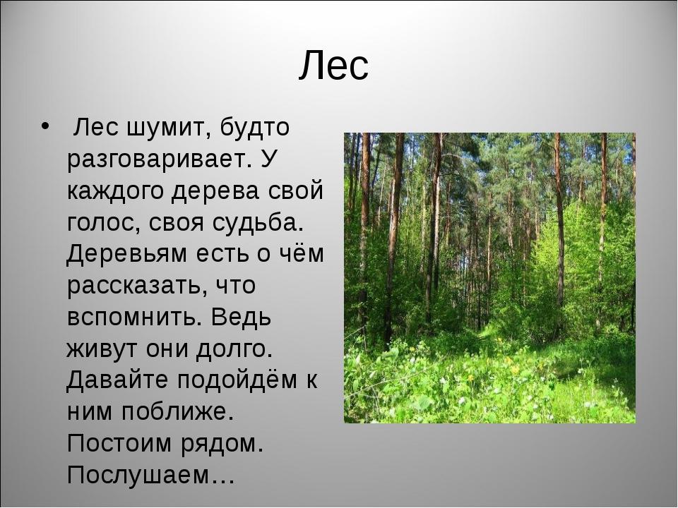 Лес Лес шумит, будто разговаривает. У каждого дерева свой голос, своя судьба....