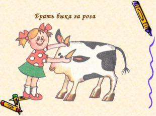 Брать быка за рога