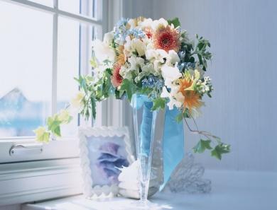 цветы на окне фото