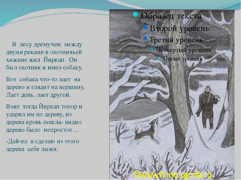 В лесу дремучем между двумя реками в охотничьей хижине жил Йиркап. Он был ох...
