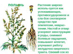 Растение широко исполь-зуется как успокаивающее, противосудорожное и сла-бое