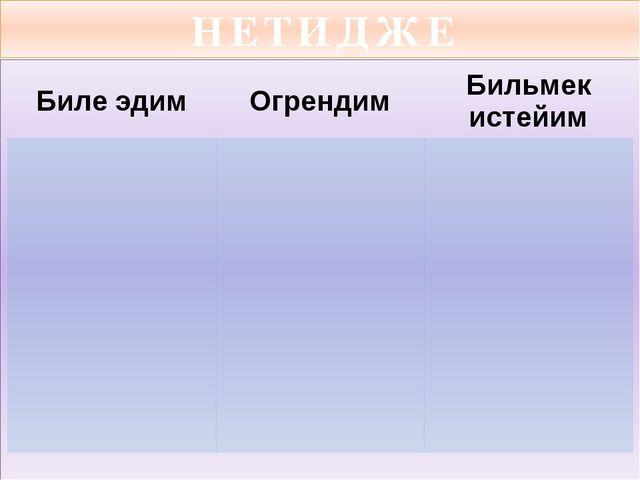 НЕТИДЖЕ Билеэдим Огрендим Бильмекистейим