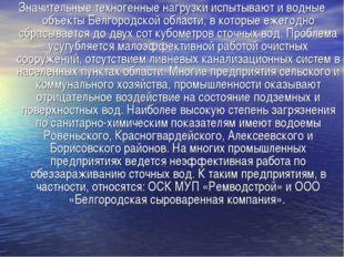 Значительные техногенные нагрузки испытывают и водные объекты Белгородской об