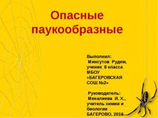 Опасные паукообразные Выполнил: Минсутов Рудем, ученик 8 класса МБОУ «БАГЕРОВ