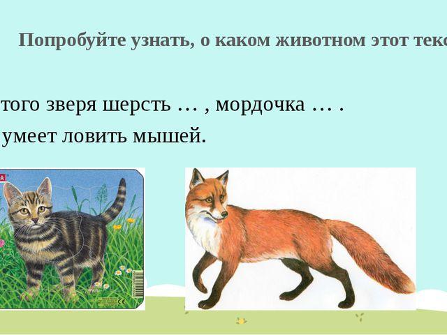Попробуйте узнать, о каком животном этот текст У этого зверя шерсть … , мордо...