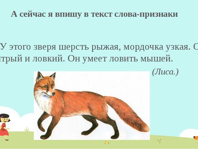А сейчас я впишу в текст слова-признаки У этого зверя шерсть рыжая, мордочка...