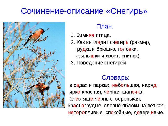 Сочинение-описание «Снегирь» План. 1. Зимняя птица. 2. Как выглядит снегирь (...