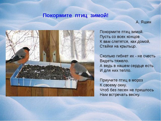А. Яшин Покормите птиц зимой. Пусть со всех концов К вам слетятся, как домой...