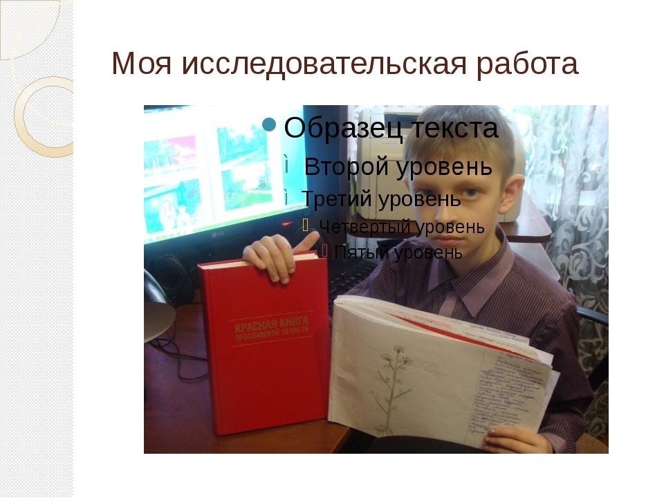 Моя исследовательская работа