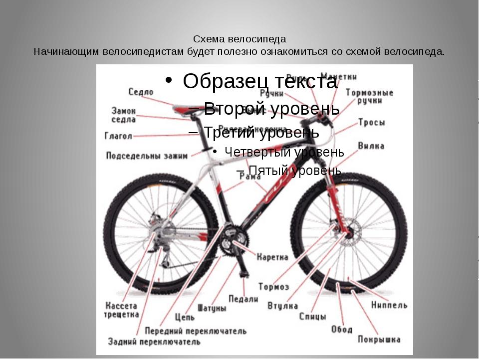 Схема велосипеда Начинающим велосипедистам будет полезно ознакомиться со схем...