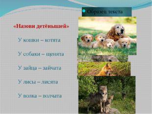 «Назови детёнышей» У кошки – котята У собаки – щенята У зайца – зайчата У ли