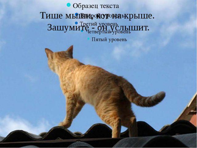 Тише мыши, кот на крыше. Зашумите - он услышит.