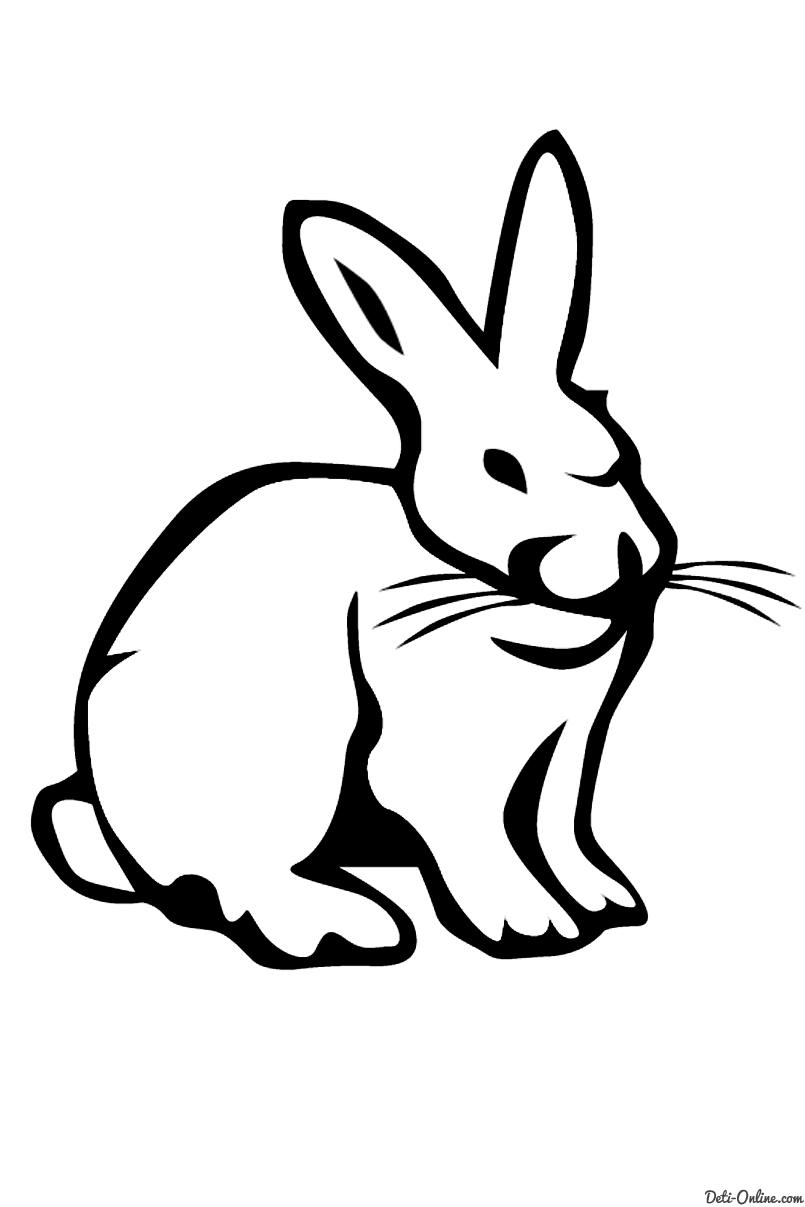 http://deti-online.com/images/raskraski/raskraski-zhivotnyh--rabbit--21.jpg