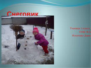 Снеговик Ученицы 1 класса СОШ № 8 Игнатенко Даши