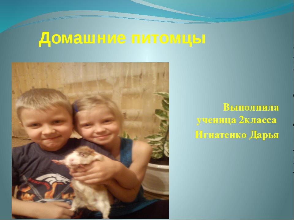 Домашние питомцы Выполнила ученица 2класса Игнатенко Дарья