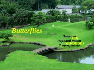 Tag questions Правила Игровой тест О программе Butterflies