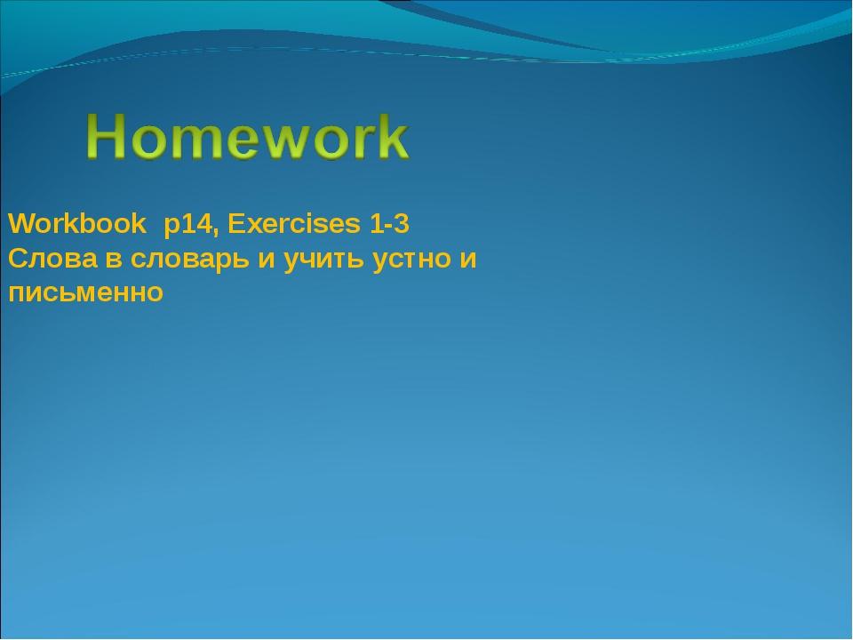 Workbook р14, Exercises 1-3 Слова в словарь и учить устно и письменно