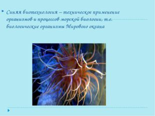 Синяя биотехнология – техническое применение организмов и процессов морской б
