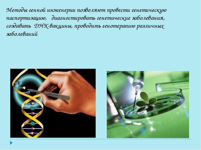 Методы генной инженерии позволяют провести генетическую паспортизацию, диагн...