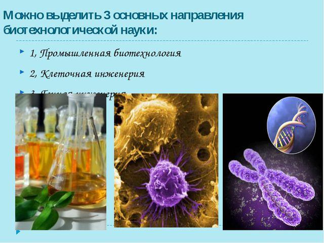 Можно выделить 3 основных направления биотехнологической науки: 1, Промышленн...