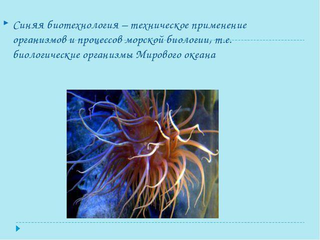 Синяя биотехнология – техническое применение организмов и процессов морской б...