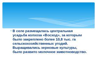 В селе размещалась центральная усадьба колхоза «Восход», за которым было закр