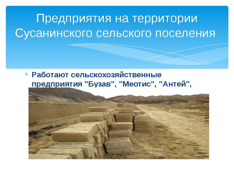 """Работают сельскохозяйственные предприятия """"Бузав"""", """"Меотис"""", """"Антей"""", """"Поле""""...."""