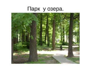 Парк у озера.