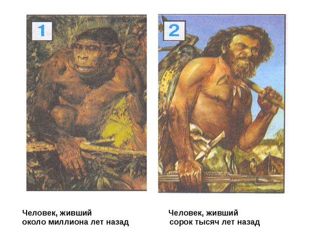 Человек, живший Человек, живший около миллиона лет назад сорок тысяч лет назад