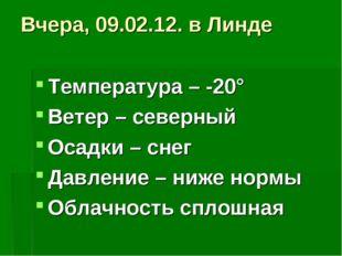 Вчера, 09.02.12. в Линде Температура – -20° Ветер – северный Осадки – снег Да