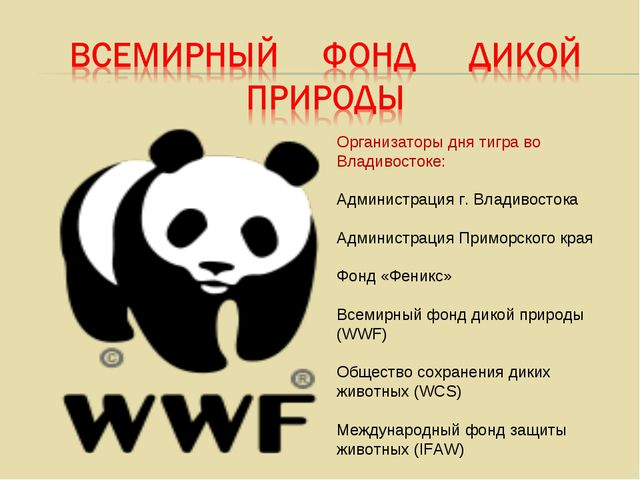 Организаторы дня тигра во Владивостоке: Администрация г. Владивостока Админис...