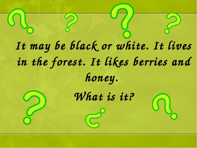 It may be black or white. It lives in the forest. It likes berries and honey....