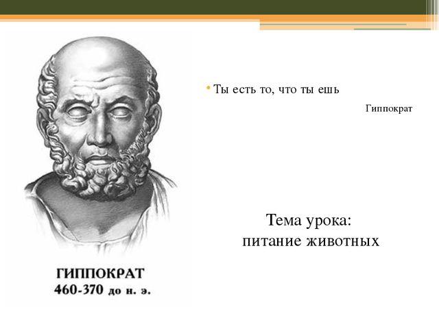 Ты есть то, что ты ешь Гиппократ Тема урока: питание животных