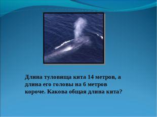 Длина туловища кита 14 метров, а длина его головы на 6 метров короче. Какова