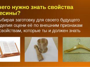 Для чего нужно знать свойства древесины? Выбирая заготовку для своего будущег