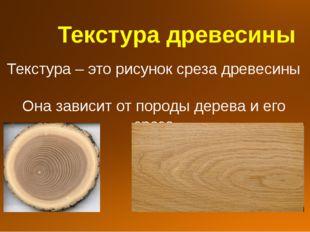 Текстура древесины Текстура – это рисунок среза древесины Она зависит от пор