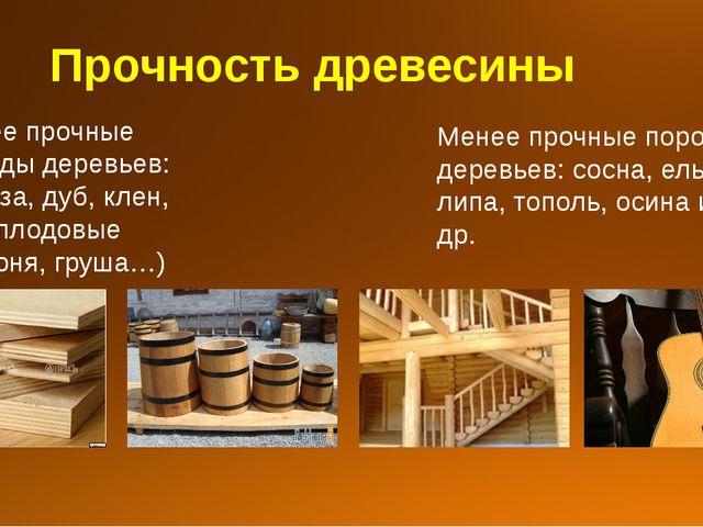 Прочность древесины Более прочные породы деревьев: береза, дуб, клен, бук, пл...