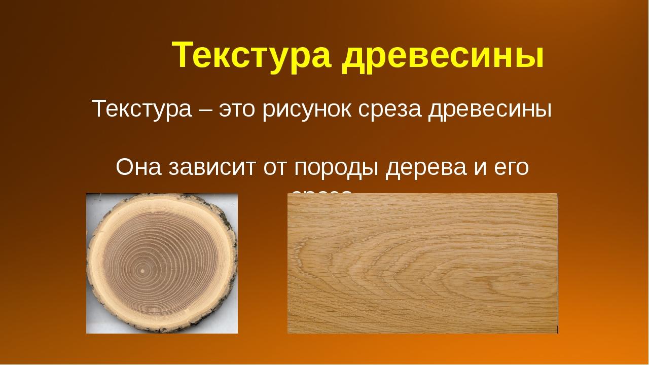 Текстура древесины Текстура – это рисунок среза древесины Она зависит от пор...