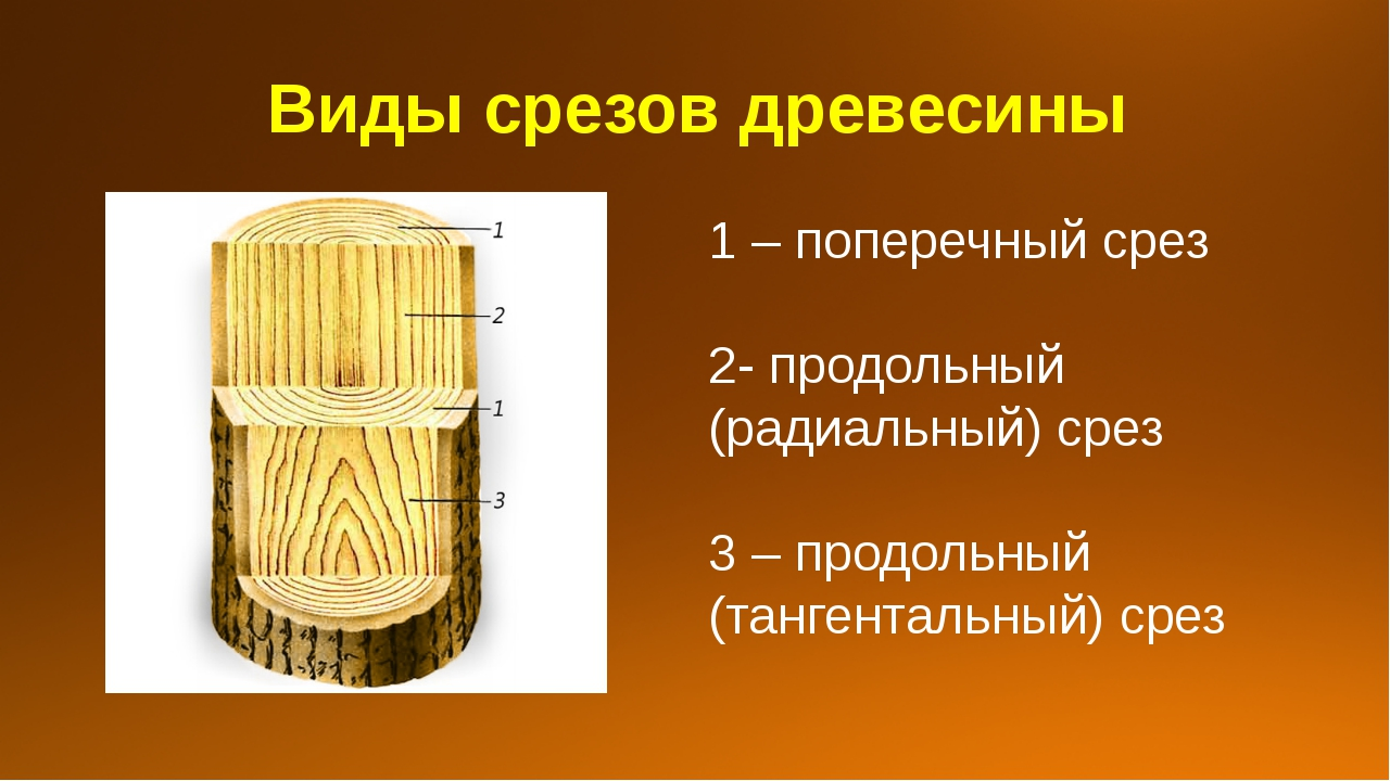 Виды срезов древесины 1 – поперечный срез 2- продольный (радиальный) срез 3 –...