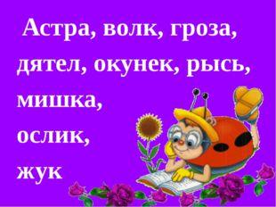 Астра, волк, гроза, дятел, окунек, рысь, мишка, ослик, жук