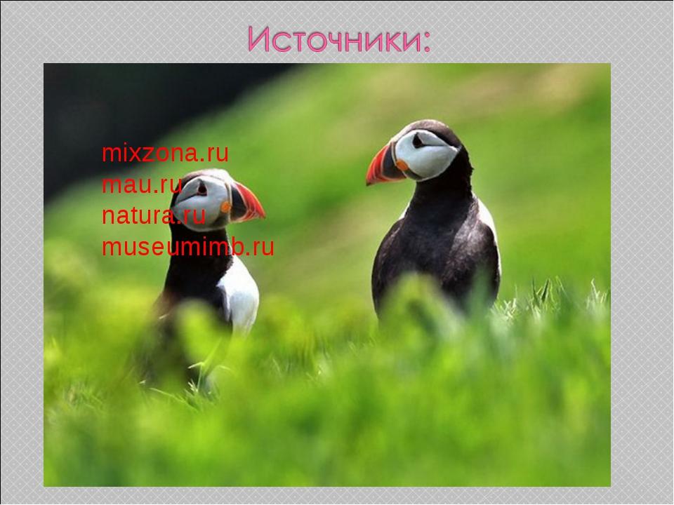 mixzona.ru mau.ru natura.ru museumimb.ru